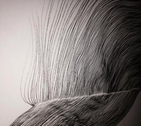 Detail // AirCut #3 : 2014 / Staedtler on paper / S.Tusseau
