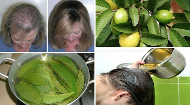 Een vrouw, wiens man te maken kreeg met haaruitval, besloot uit nieuwsgierigheid te onderzoeken welk ingrediënt alle producten...