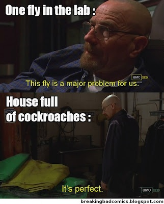 Fly VS roach? Roach wins!  Breaking Bad humor. Seriously though the Fly episode is my favorite one. Bryan Cranston. Aaron Paul. Walter White. Jesse Pinkman