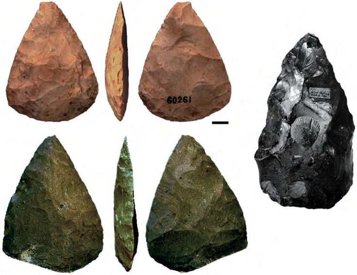 """""""Neanderthal Symbolism"""" -- translation of a French article (""""Pigments, engravings, jewellery: The controversial symbolic behaviour of the Neandertals,"""" By Marie Soressi and Francesco D'Errico) here: http://www.eva.mpg.de/evolution/staff/soressi/pdf/Derricco-Soressi2006-La-Recherche.pdf.  Looks at engravings, perforations, tools (pictured), curiosities, pigments, and ornaments."""