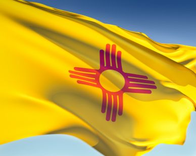 New Mexico Online Historical Newspapers Summary - UPDATED