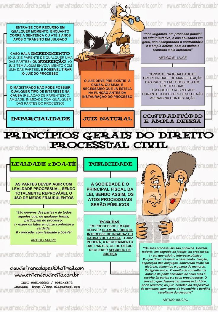 ENTENDEU DIREITO OU QUER QUE DESENHE ???: PRINCÍPIOS GERAIS DO PROCESSO CIVIL