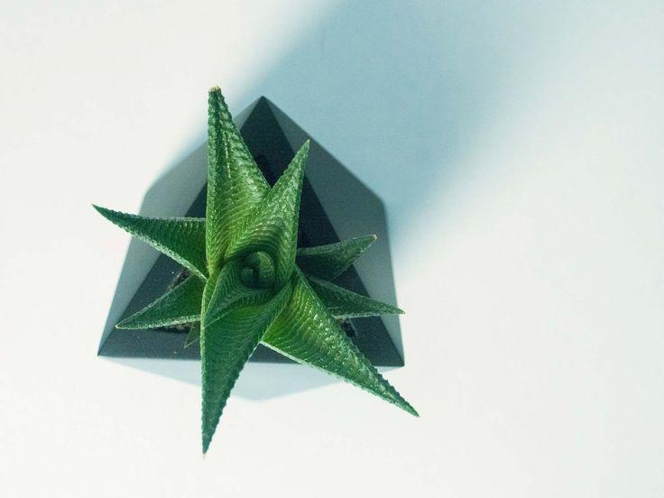 Octaedru - vas pentru plante. Geometrica, o colectie de vase moderne, ideale pentru plante suculente sau cactusi, acasa sau la birou. Create de Atelierro. www.atelierro.eu