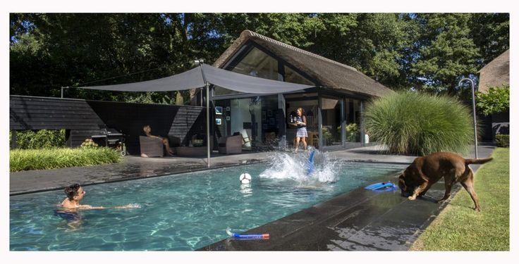 Moderne overkapping tuin met rechthoekig zwembad en luxe tuinhuis