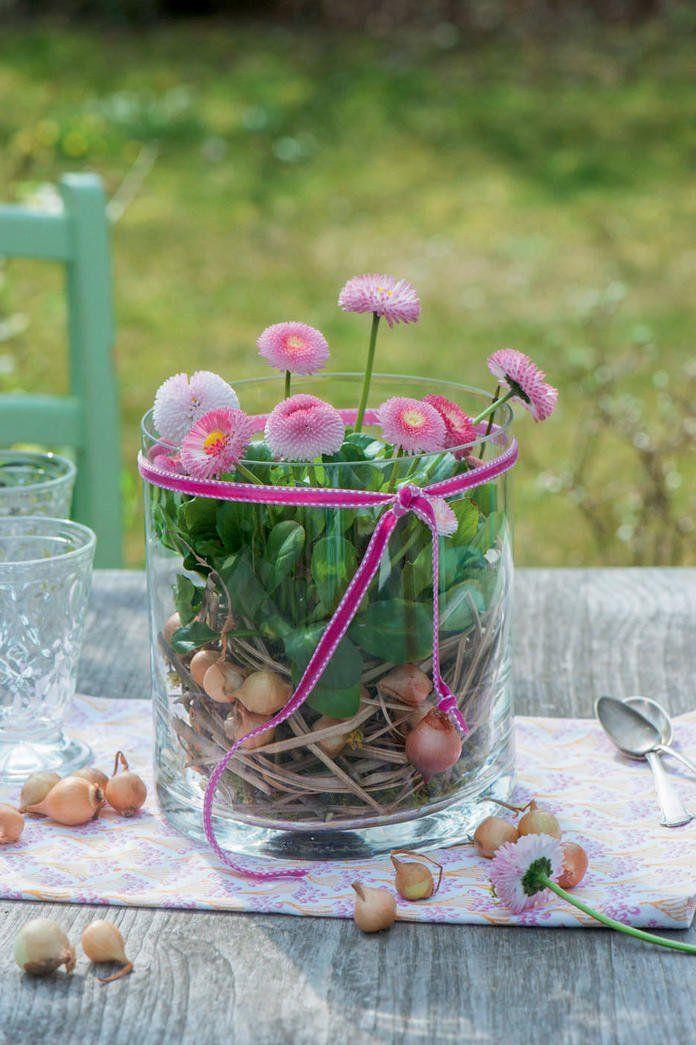Fruhlingsdeko Mit Bellis Blumengestecke Pinterest Fruhling