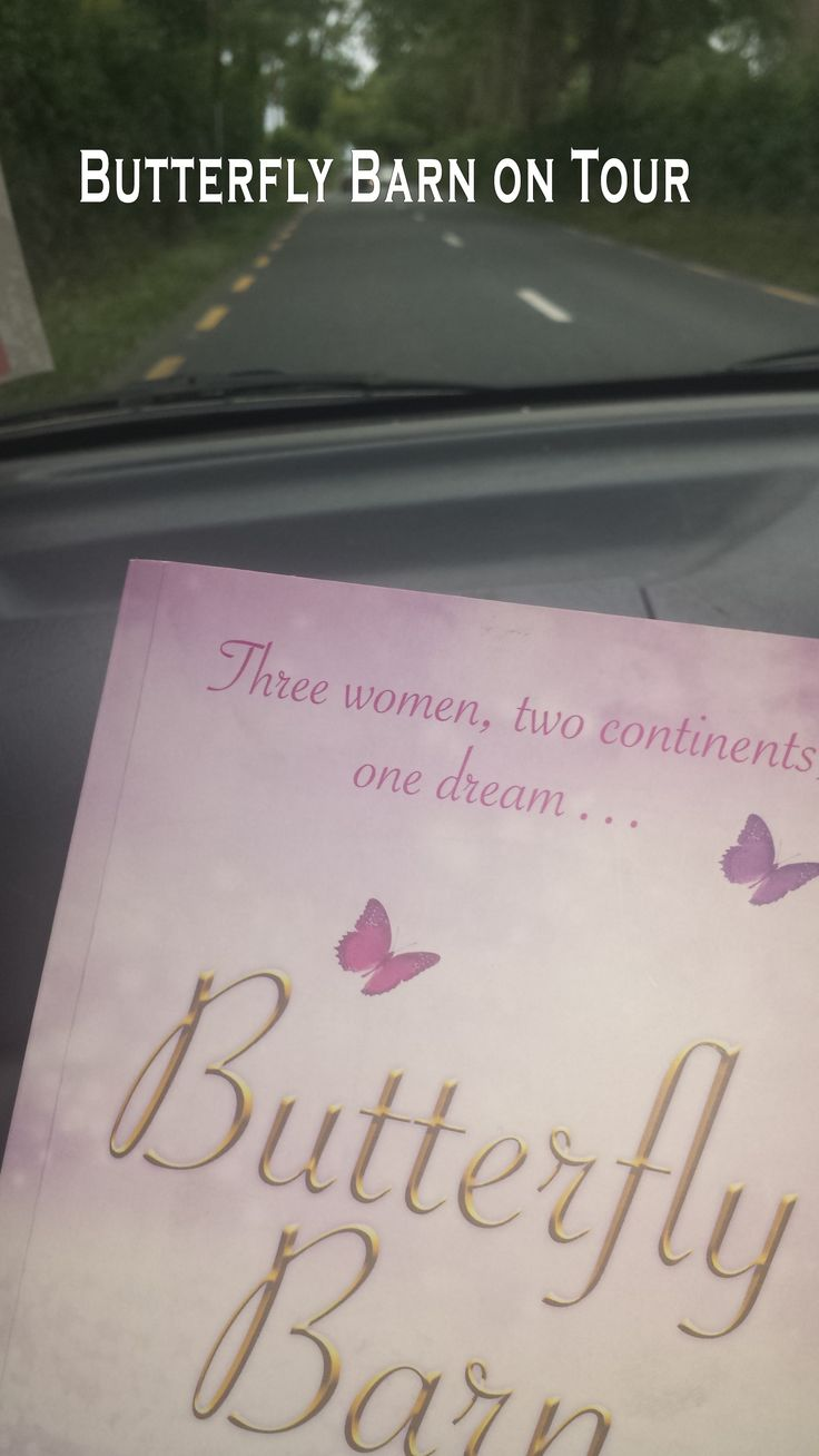 www.karenpowerauthor.com Butterfly Barn on a road trip somewhere in Ireland and loving the scenery.