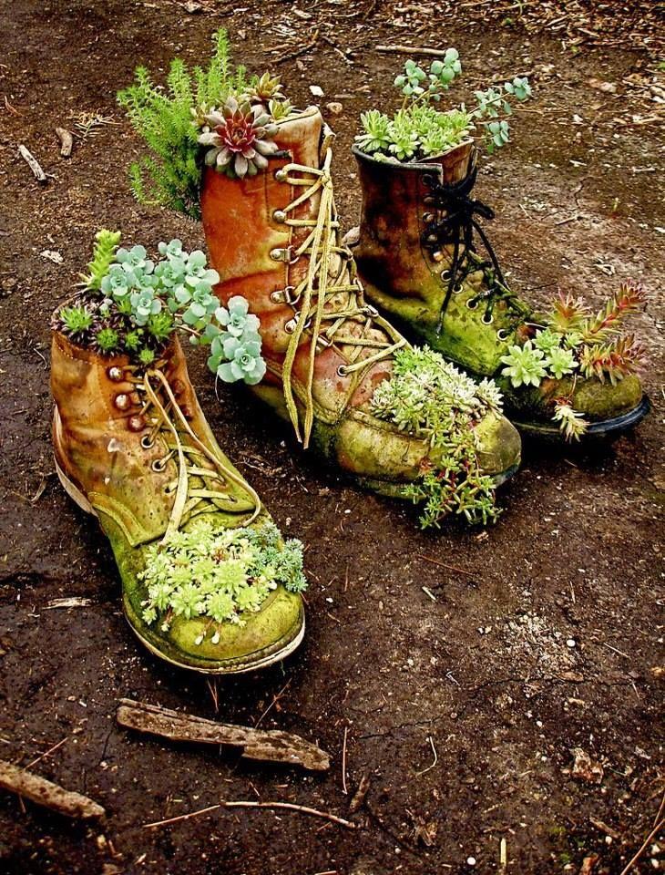 repurposed succulent boots