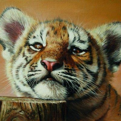 Tiger Cub 20 by 14ins 2015 copy