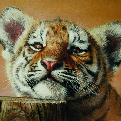 Tiger Cub 20 by 14ins 2015 copy