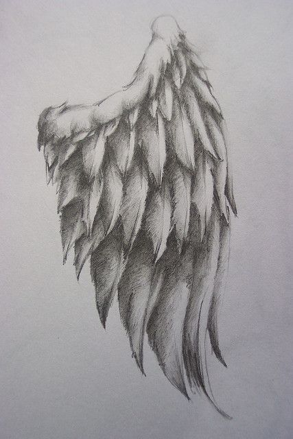 Angel wing. I want two angel wings like this on my back, but I want them to go down my entire back and I want some of the feathers to flutter out on my sides and show on my stomach a little bit like with the tips of the feathers showing a little. <3