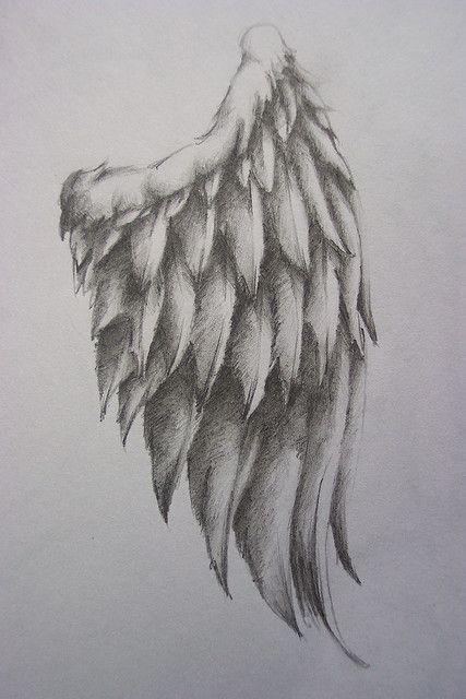 Diseño de alas para tatoo.