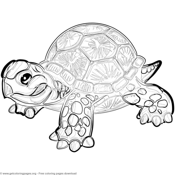Coloring Pages, Black And White Cute Kawaii Hand Drawn Turtle ... | 700x700