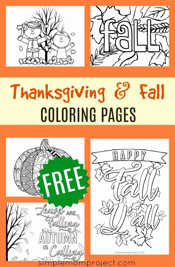 Thanos And Spiderman Coloring Pages For Kids Coloring Pages For Kids Coloring Pag Fall Coloring Pages Coloring Pages For Kids Printable Activities For Kids