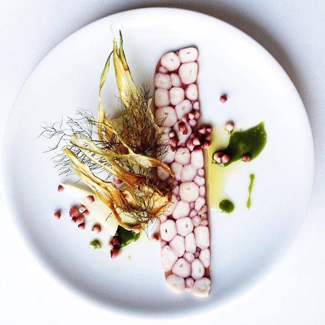 Octopus and fennel by chef Mark Best of Marque Restaurant from Australia #TheArtOfPlating