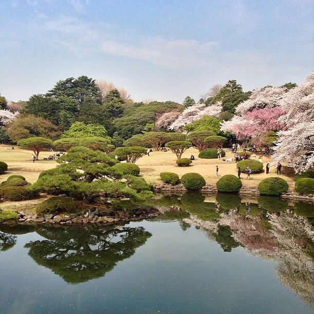 新宿御苑 (Shinjuku Gyoen National Garden) in 新宿区, 東京都