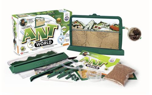 This super cool ant world allows you to watch the ants build tunnels, construct their home and feed each other.