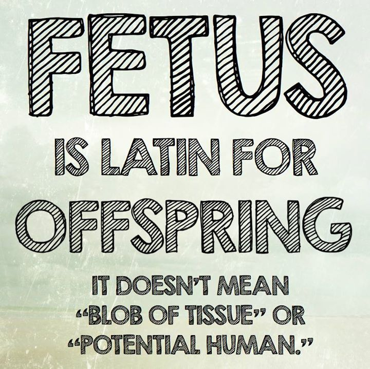Beliefs. I am not taking a stand on the Abortion issue. I am just trying to explain what the words origin means.
