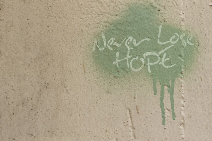 Never Lose Hope ~
