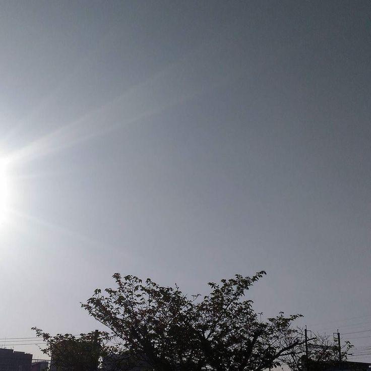 おはようございます快晴の金曜日今日を乗り切れば怒涛の9連休通院日含むです #sky #cloud #空 #雲 #イマソラ #goodmorning #おはよう