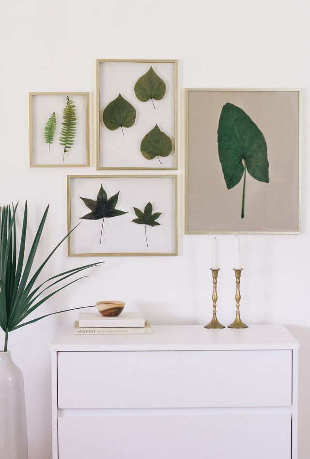 How To Frame Real Leaves To Create Original Botanical Art Hunker Leaf Art Diy Framed Wall Art Botanical Art