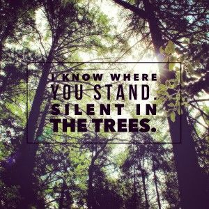 Trees twenty one pilots...so beautiful, you will cry :)