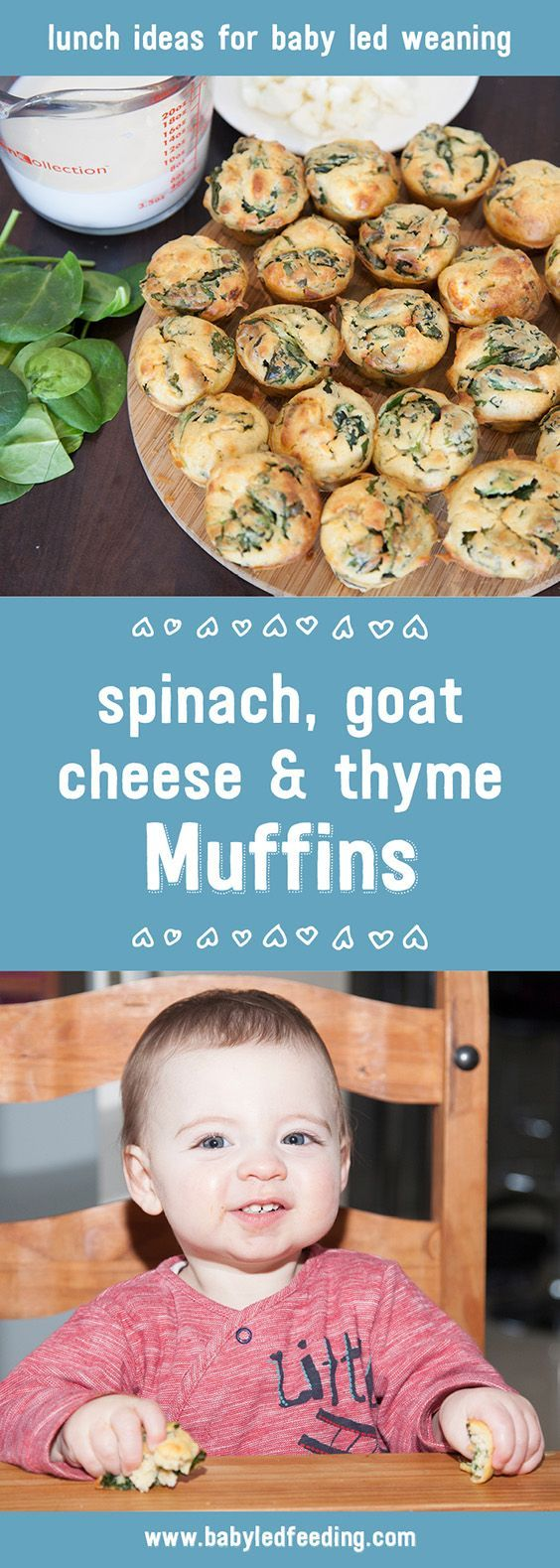 Spinach, Goat Cheese and Thyme Muffins are easy for tiny hands to manage themselves. They're full of iron and other vitamins ideal for blw. #babyledweaning #blw #kidfood #kidfriendlyfood #babyfood #toddlerfood