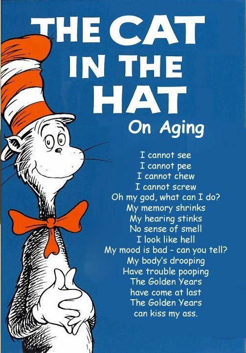 Cat In The Hat Birthday Gifts