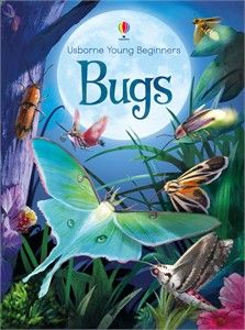Usborne Young Beginners Series: Bugs