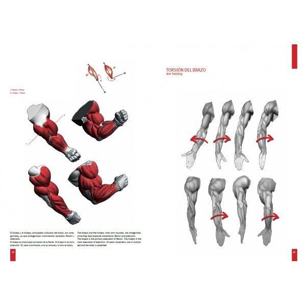 Desenhos - Página 4 705e0baf5e9c9aec1ea5a32b1eb8f5c1