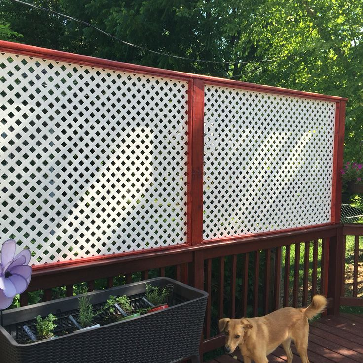 22 best images about backyard on pinterest lowes for Portable patio privacy screens