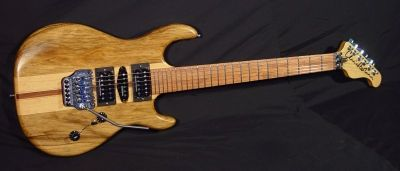 Chris Larkin Guitars - Brian R's Special