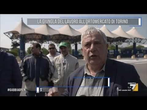 Attualità: La #giungla del lavoro all'ortomercato di Torino (link: http://ift.tt/2p92QqM )