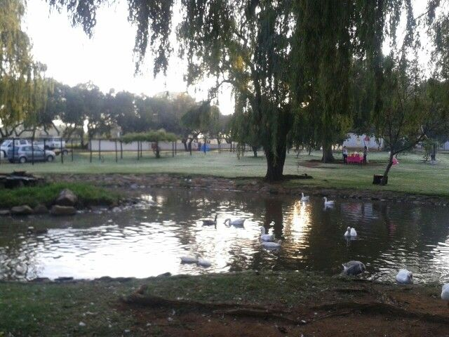 The farm in town #Boeremark