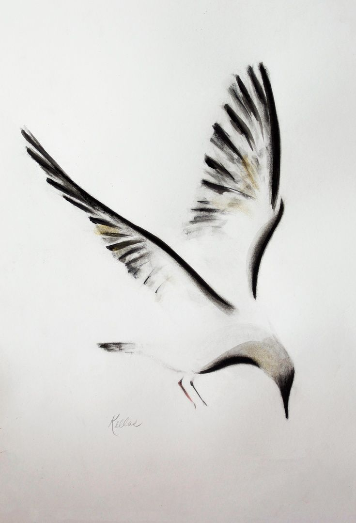 best 25 seagull tattoo ideas on pinterest three birds tattoo