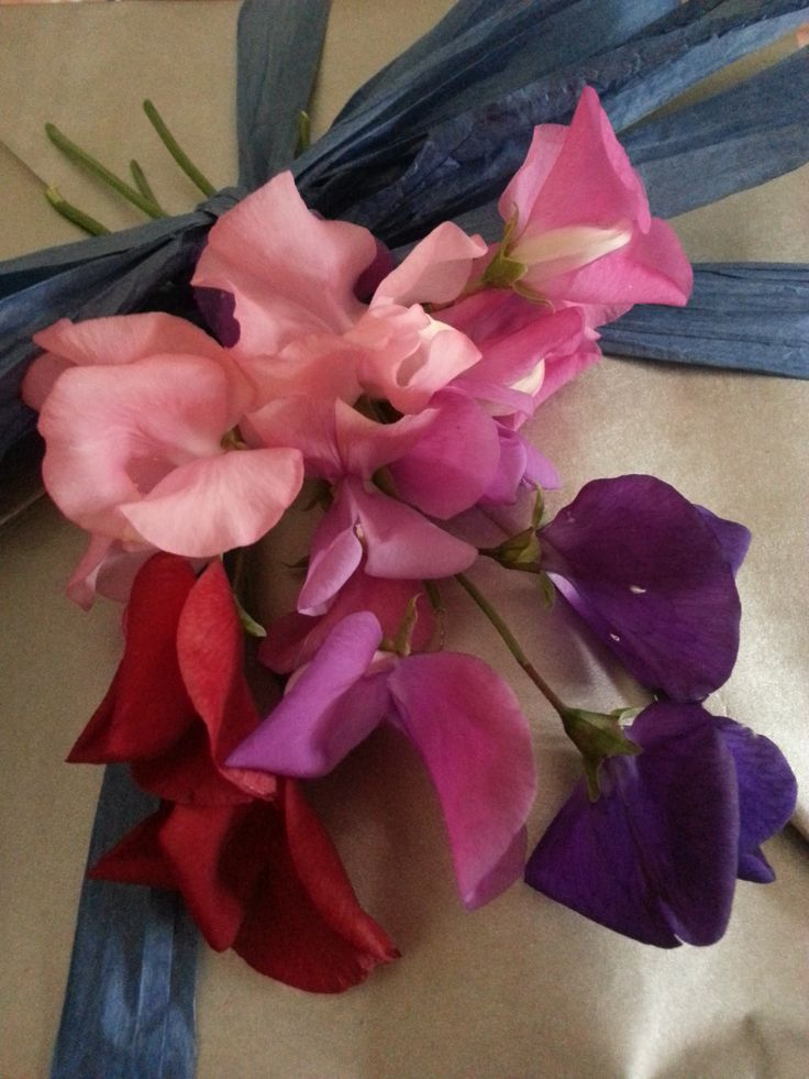 wrapping with sweetpeas.