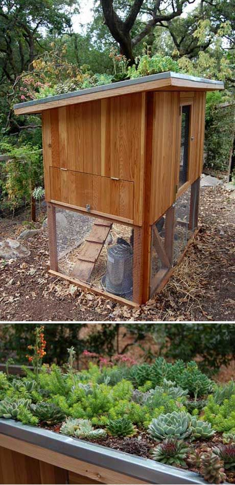 Top 99 Ideas About For The Garden Fowls And A Worm Farm