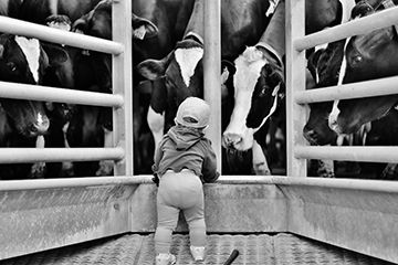 Winners Announced in National Farm Photo Contest Category 5 - Farm Fun Photo by Sheri Mangin - 1st Place