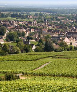 Le village de Buxy  © BIVB / ARMELLEPHOTOGRAPHE