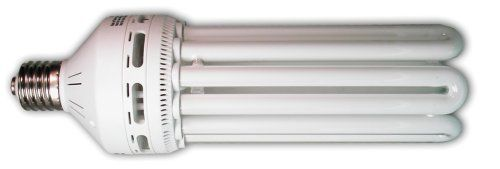 Hydrofarm FLC125D 125-Watt Daylight Compact Fluorescent Bulb - http://hydroponicsupplies.hzhtlawyer.com/hydrofarm-flc125d-125-watt-daylight-compact-fluorescent-bulb/
