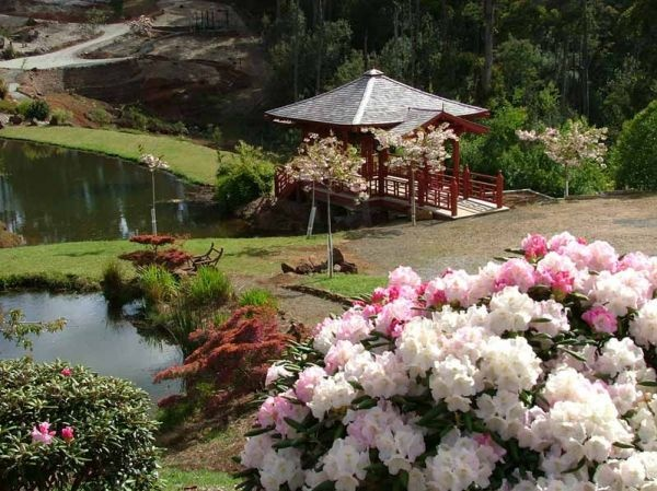 In Japonia... primavara. Sa ne bucuram de SAKURA - Festivalul Florii de Cires
