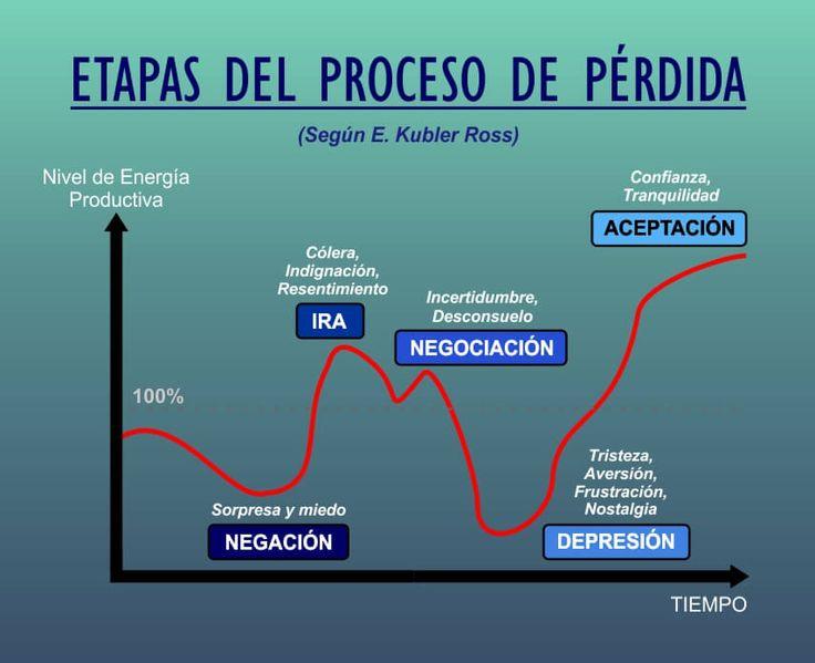 etapas del proceso de perdida - kubler ross