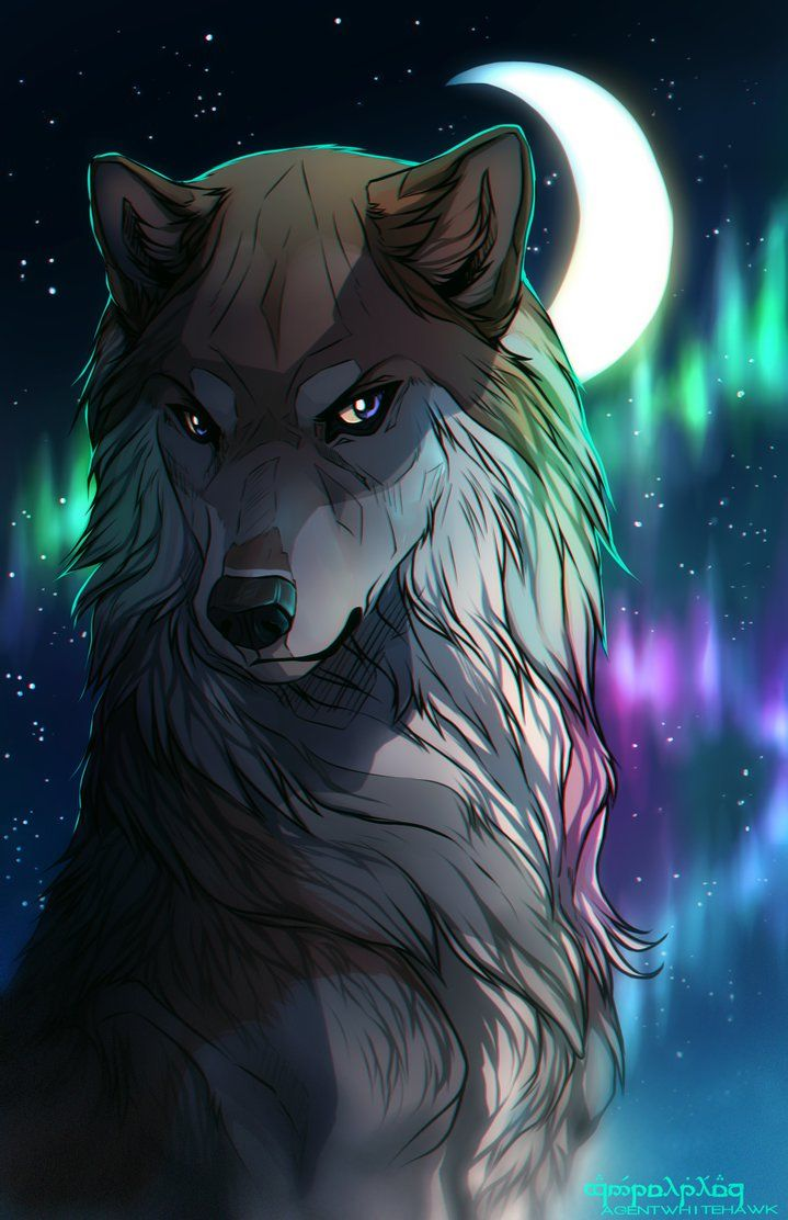 1065 best anime wolves images on pinterest anime wolf - Wolf girl anime pictures ...