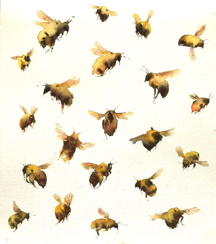 Bumblebees (2016) Watercolours by Kate Osborne | Artfinder
