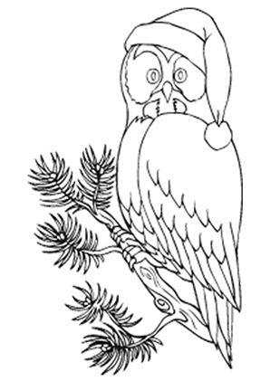 Ausmalbild Eule mit Weihnachtsmütze