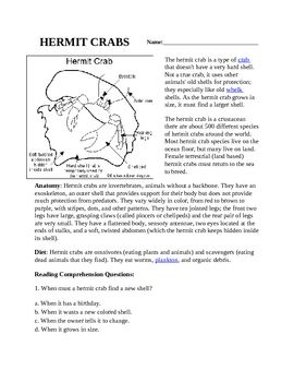 1000 Images About Aaa Reading Comprehension Sheets On