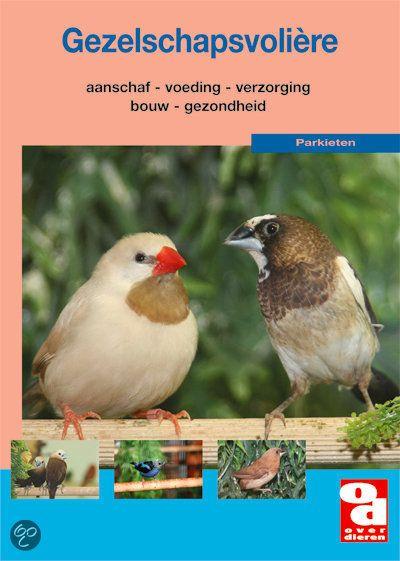 Handige tips en deskundige adviezen voor het verzorgen van vogels in een gezelschapsvolière.