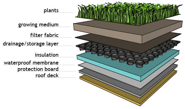 Green roof - components