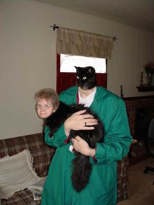 This old lady and a cat | 30 Most Disturbing Face Swaps Of 2012