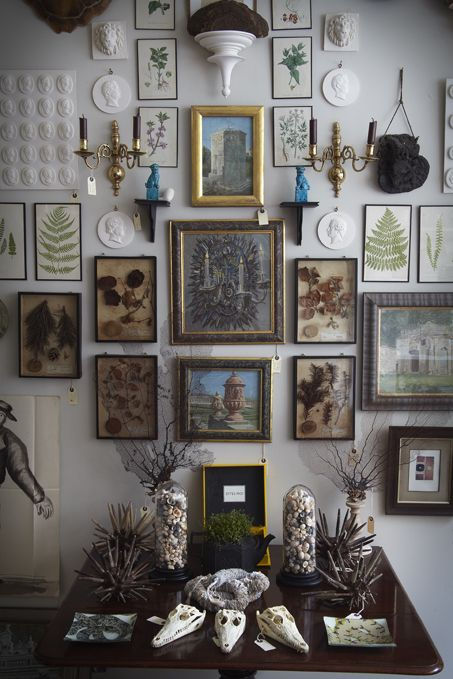 Cabinet of Curiosities | Ben Pentreath Ltd || wall decor layer
