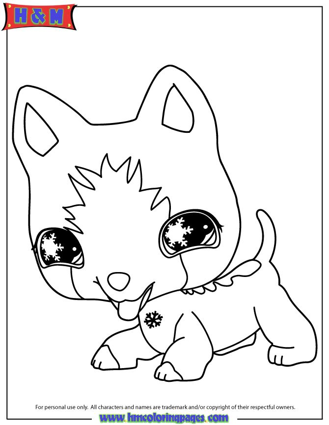 littlest pet shop coloring pages littlest pet shop dog coloring page